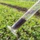 Groeiplaats verbetering tuin